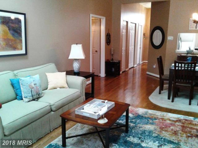 5016 Bridgepointe Drive, Chester, MD 21619 (#QA10133142) :: Maryland Residential Team