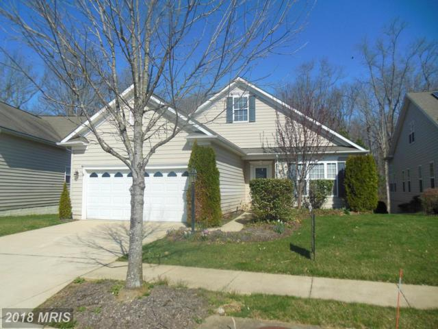335 Overture Way, Centreville, MD 21617 (#QA10155564) :: Keller Williams Pat Hiban Real Estate Group