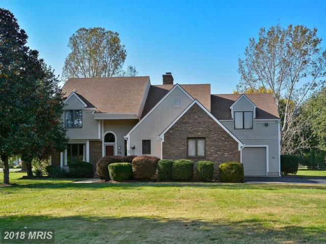 39 Greenwood Shoals Shoals, Grasonville, MD 21638 (#QA10193089) :: Maryland Residential Team