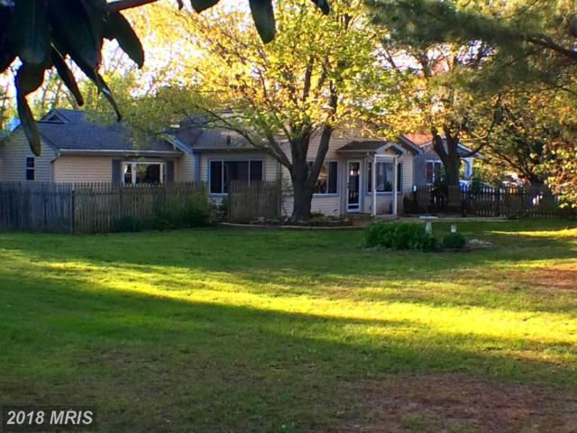 128 Allegany Road, Stevensville, MD 21666 (#QA10228166) :: The Gus Anthony Team