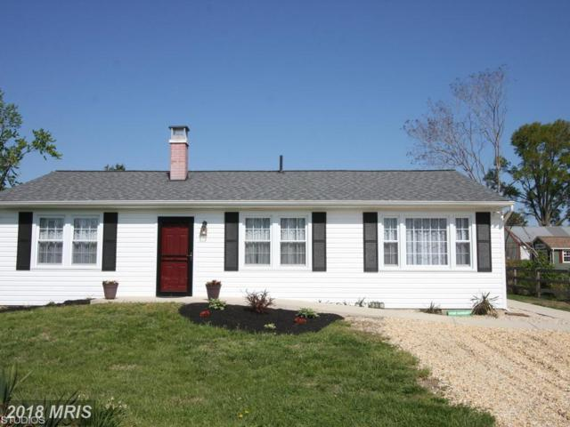 510 Paul Drive, Stevensville, MD 21666 (#QA10231758) :: Labrador Real Estate Team