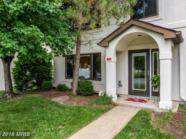 45-A Queen Neva Court A-Ag, Chester, MD 21619 (#QA10262544) :: Charis Realty Group