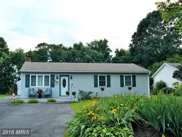 228 Johnny Lane, Stevensville, MD 21666 (#QA10279831) :: Bob Lucido Team of Keller Williams Integrity