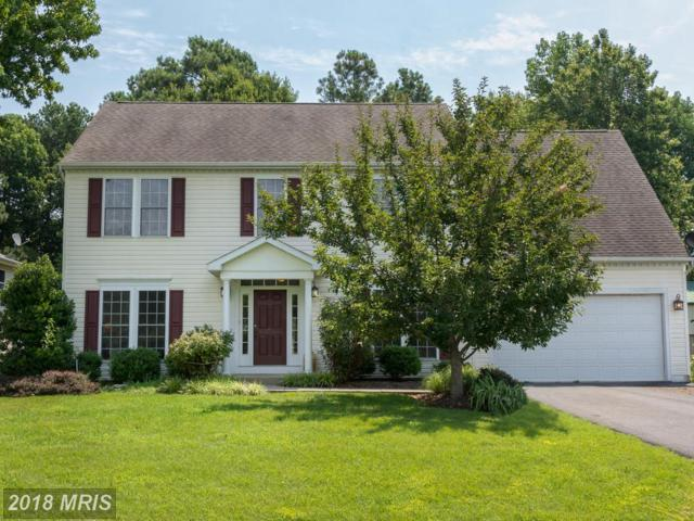 608 Old Love Point Road, Stevensville, MD 21666 (#QA10284610) :: Bob Lucido Team of Keller Williams Integrity