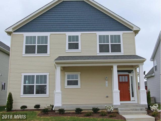 1 Conor Drive, Stevensville, MD 21666 (#QA10293538) :: ExecuHome Realty