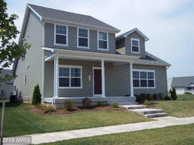 3 Conor Drive, Stevensville, MD 21666 (#QA10293545) :: ExecuHome Realty