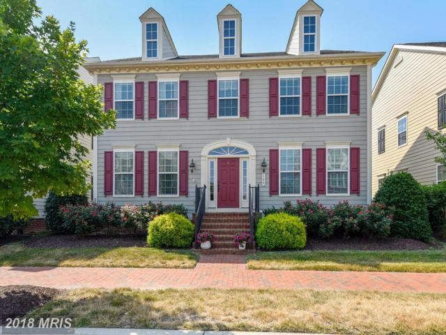 126 Henry Stoupe Way, Chester, MD 21619 (#QA10303150) :: Bob Lucido Team of Keller Williams Integrity