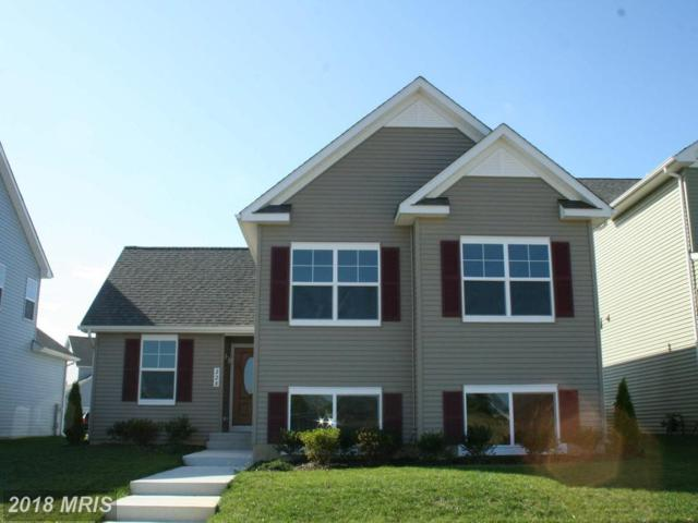 0 John Patrick Drive, Stevensville, MD 21666 (#QA10310986) :: ExecuHome Realty