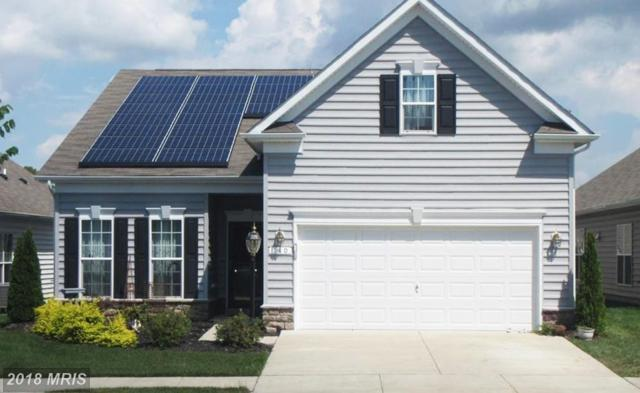140 Concerto Avenue, Centreville, MD 21617 (#QA10337064) :: Keller Williams Pat Hiban Real Estate Group