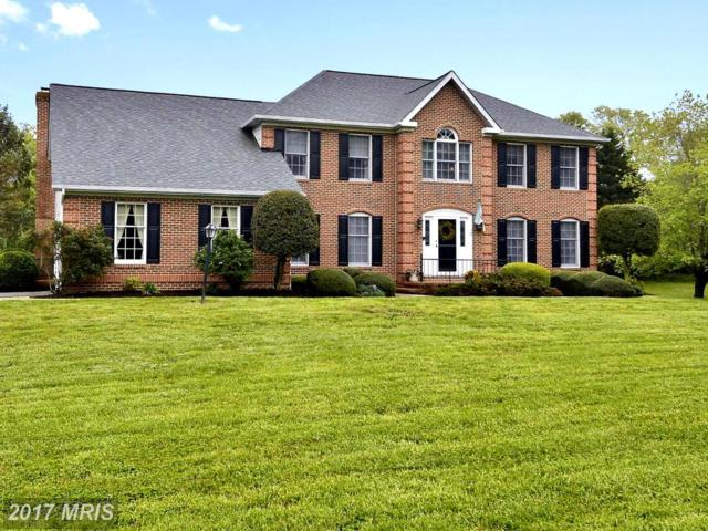 305 Bennett Point Road, Queenstown, MD 21658 (#QA9849355) :: Pearson Smith Realty