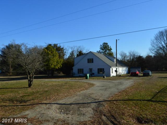 308 Chester River Heights Road, Millington, MD 21651 (#QA9856848) :: Pearson Smith Realty