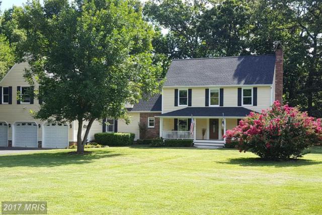 18 Greenwood Shoals, Grasonville, MD 21638 (#QA9887405) :: LoCoMusings