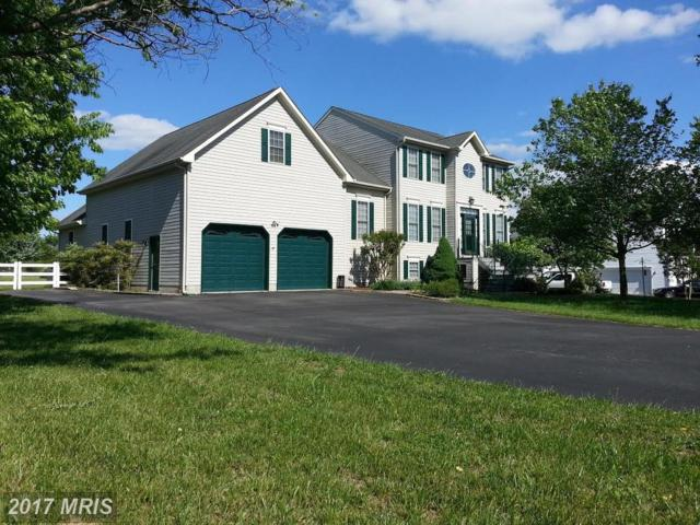 236 Three Creeks Drive, Centreville, MD 21617 (#QA9936360) :: Pearson Smith Realty