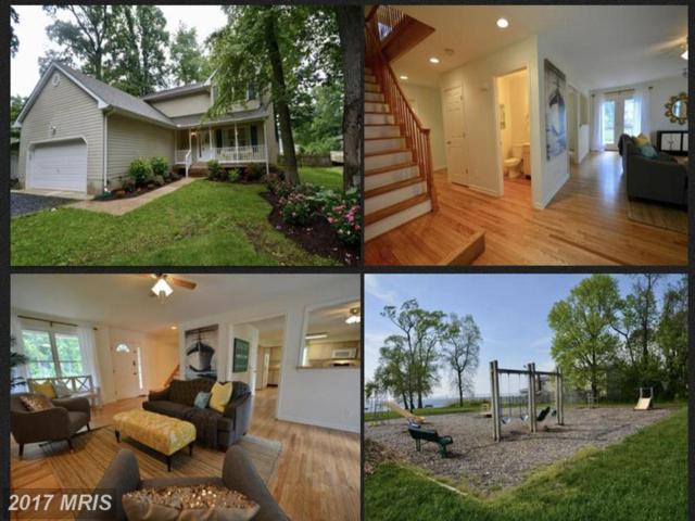 404 Bay City Road, Stevensville, MD 21666 (#QA9968297) :: Pearson Smith Realty