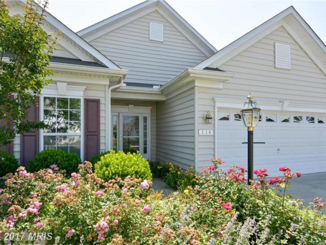 114 Concerto Avenue, Centreville, MD 21617 (#QA9977336) :: Pearson Smith Realty