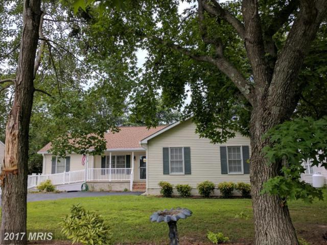 703 Reynolds Drive, Stevensville, MD 21666 (#QA9988682) :: Pearson Smith Realty