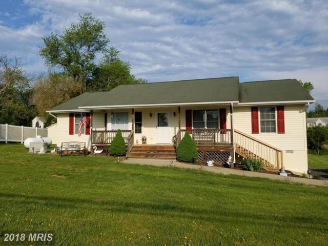 3 Juliannes Way, Amissville, VA 20106 (#RP10235699) :: Circadian Realty Group