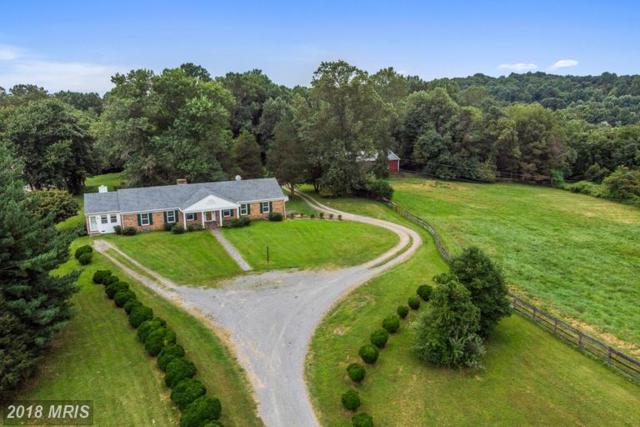 14564 Lee Highway, Amissville, VA 20106 (#RP10335089) :: Keller Williams Pat Hiban Real Estate Group
