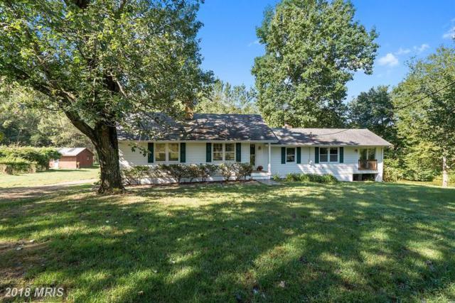 39 Four Springs Lane, Amissville, VA 20106 (#RP10340873) :: Keller Williams Pat Hiban Real Estate Group