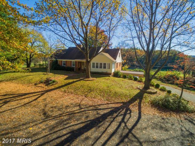 12362 Lee Highway, Sperryville, VA 22740 (#RP9914004) :: LoCoMusings