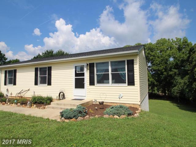 24 Wise Avenue, Strasburg, VA 22657 (#SH10032263) :: Pearson Smith Realty