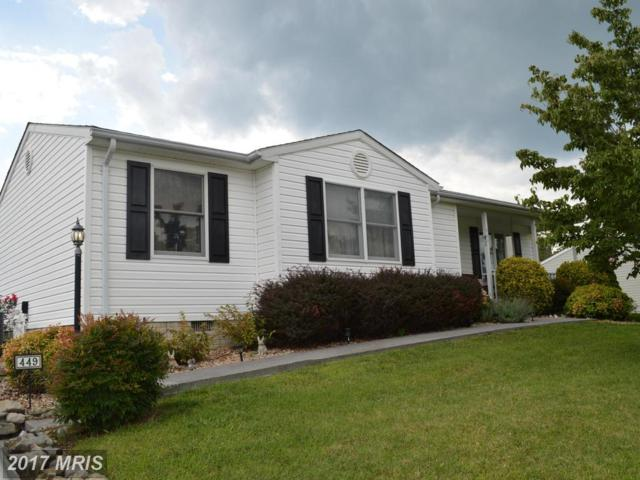 449 Little Sorrel Drive, Strasburg, VA 22657 (#SH10033478) :: Pearson Smith Realty