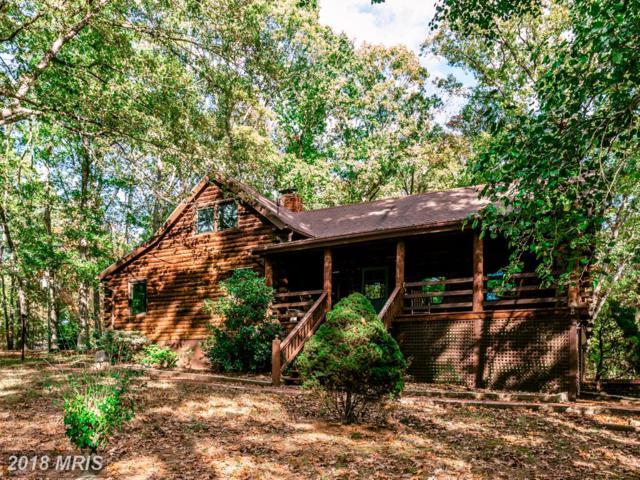 349 Forest Hill Lane, New Market, VA 22844 (#SH10087682) :: Green Tree Realty