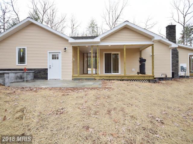 99 Ironwood Road, Mount Jackson, VA 22842 (#SH10121887) :: Pearson Smith Realty