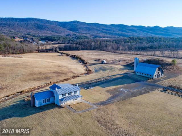 6836 Fort Valley Road, Fort Valley, VA 22652 (#SH10133710) :: The Gus Anthony Team