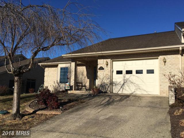 156 Maynard Lane, Strasburg, VA 22657 (#SH10138460) :: Bob Lucido Team of Keller Williams Integrity