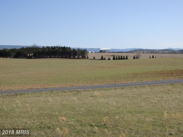 LOT 4-HFCC Pinewoods Road, Quicksburg, VA 22847 (#SH10196329) :: Green Tree Realty