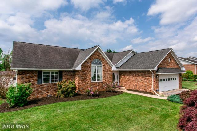 267 Clicks Lane, New Market, VA 22844 (#SH10251814) :: The Withrow Group at Long & Foster