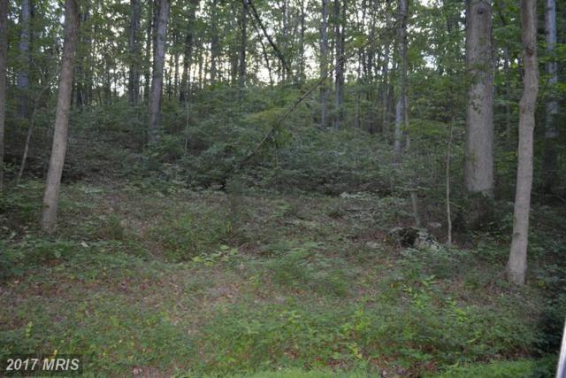 0 Mine Shaft, Fort Valley, VA 22652 (#SH9727086) :: LoCoMusings