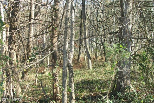 0 Deer Rapids Road, Strasburg, VA 22657 (#SH9814921) :: LoCoMusings