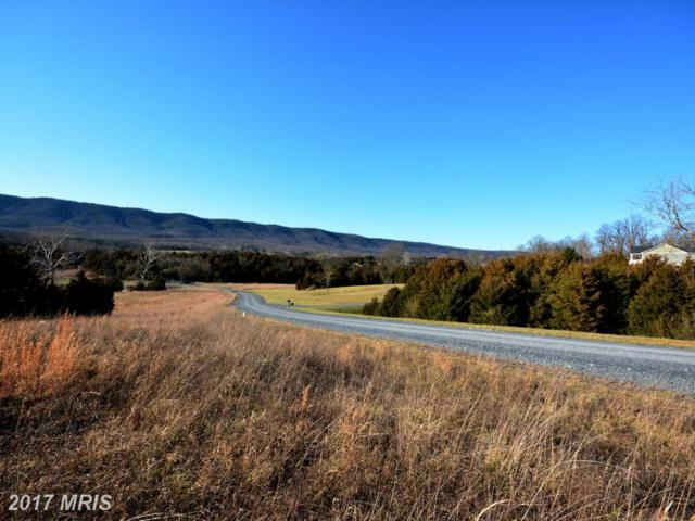 Lot 61 Savannah Drive, Strasburg, VA 22657 (#SH9883298) :: The Gus Anthony Team