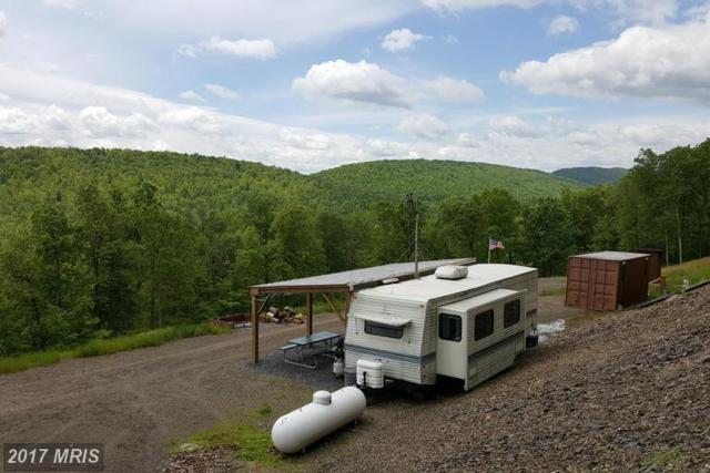 Forest Ridge Trail, Fort Valley, VA 22652 (#SH9939298) :: LoCoMusings