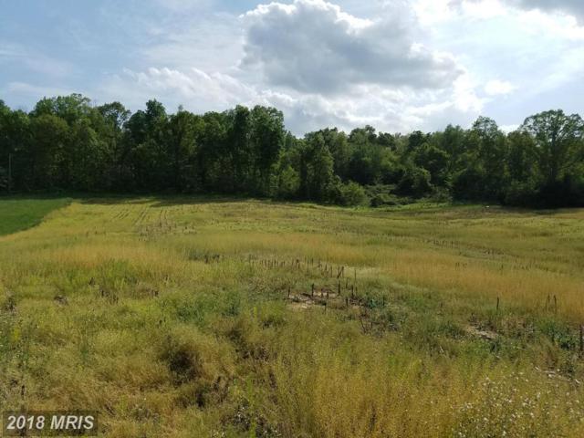 Pinewoods Road, Quicksburg, VA 22847 (#SH9942546) :: Pearson Smith Realty