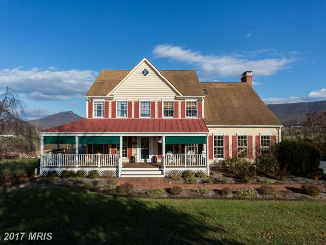 637 Highview Road, New Market, VA 22844 (#SH9945371) :: Pearson Smith Realty