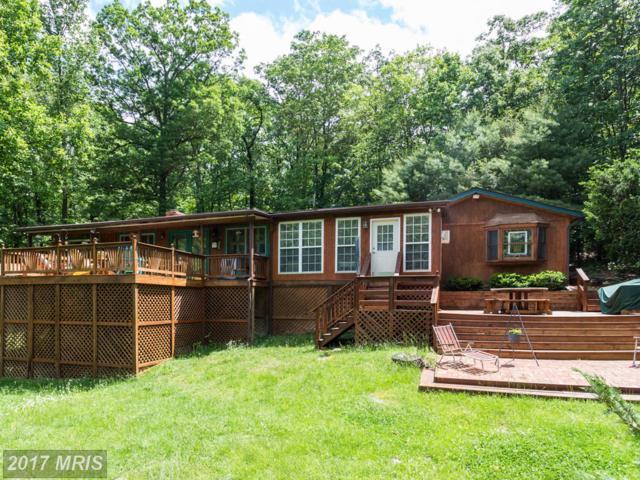 1250 Sundance Retreat Lane, New Market, VA 22844 (#SH9961505) :: Pearson Smith Realty