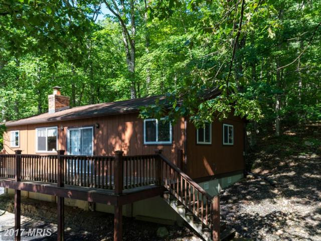 658 Sundance Retreat Lane, New Market, VA 22844 (#SH9971289) :: Pearson Smith Realty