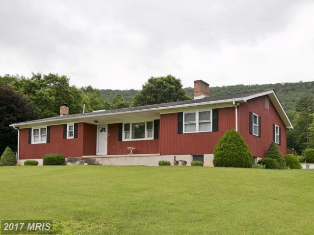 3229 Boliver Road, Fort Valley, VA 22652 (#SH9974083) :: LoCoMusings