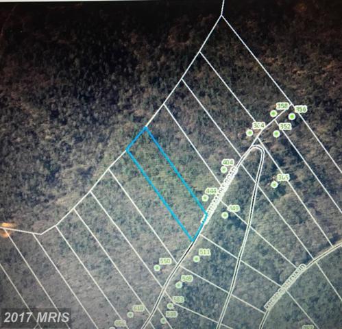 Maple Road, Mount Jackson, VA 22842 (#SH9975692) :: LoCoMusings