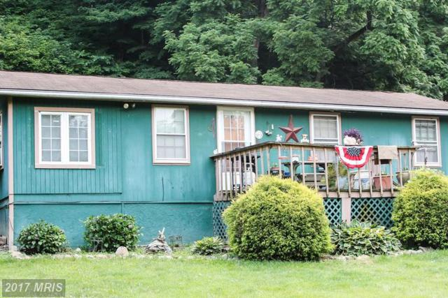 1617 Deer Rapids Road, Strasburg, VA 22657 (#SH9978832) :: LoCoMusings