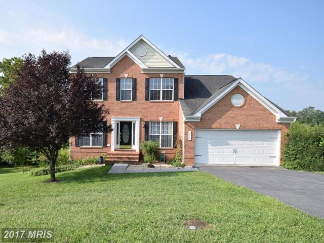 452 Meghann Drive, Woodstock, VA 22664 (#SH9994940) :: Pearson Smith Realty