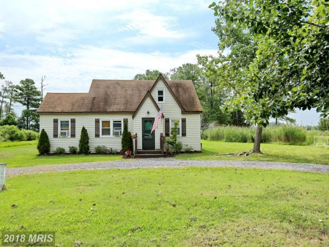 16392 Ball Point Road, Piney Point, MD 20674 (#SM10034059) :: Pearson Smith Realty