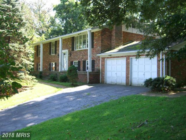 30380 Vinessa Court, Charlotte Hall, MD 20622 (#SM10048180) :: The Gus Anthony Team