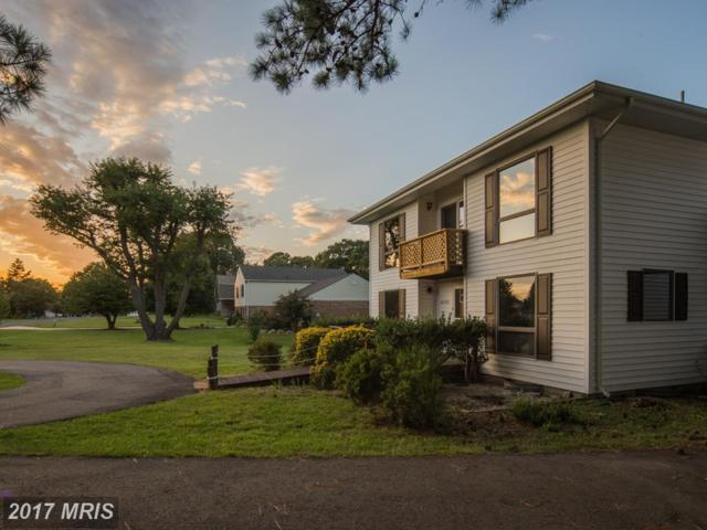 40502 Port Place W, Leonardtown, MD 20650 (#SM10053523) :: Pearson Smith Realty