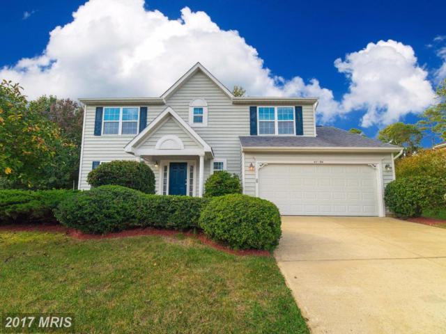 47294 Silver Slate Drive, Lexington Park, MD 20653 (#SM10072988) :: LoCoMusings