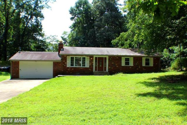29686 Skyview Drive, Mechanicsville, MD 20659 (#SM10107322) :: Pearson Smith Realty