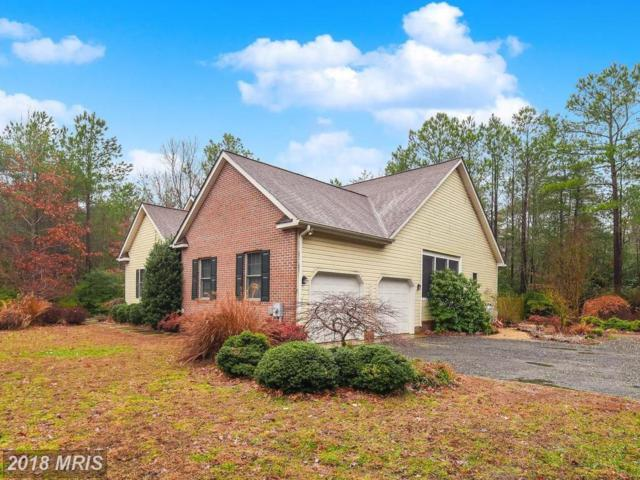 46597 Porto Bello Court, Drayden, MD 20630 (#SM10134676) :: Browning Homes Group
